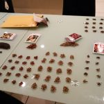 SUNHAWK LOVES BEES seed project - neat seed division