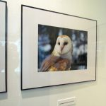 Pearson Airport - Malton Airport Gallery - Greenbelt Photo Exhibition 2016